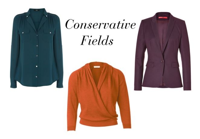 conservative fields