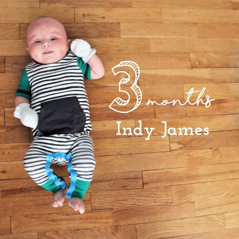 Indy James - 3 months old - JK Style